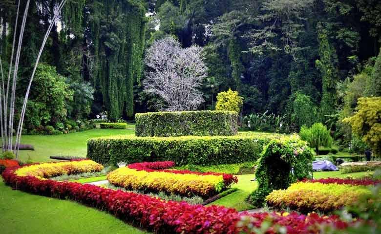 Ботанический сад возле Канди