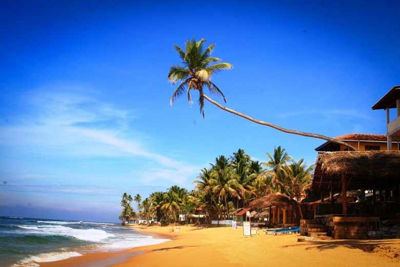 погода зимой на Шри-Ланке
