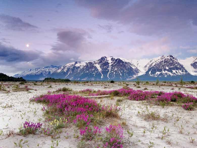 Природа Аляски - США