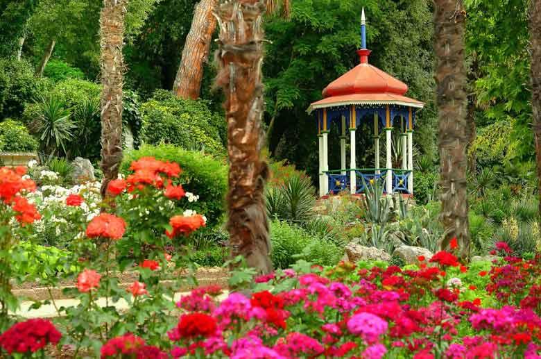 Никитский ботанический сад в Ялте