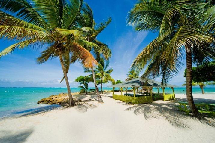 Отдых в Тринидад и Тобаго