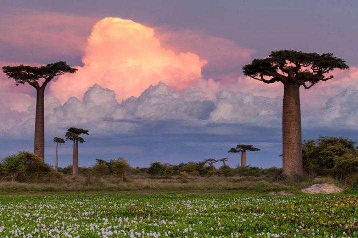 Лучшие курорты Мадагаскара