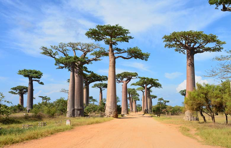 Мурундава - курорт Мадагаскара