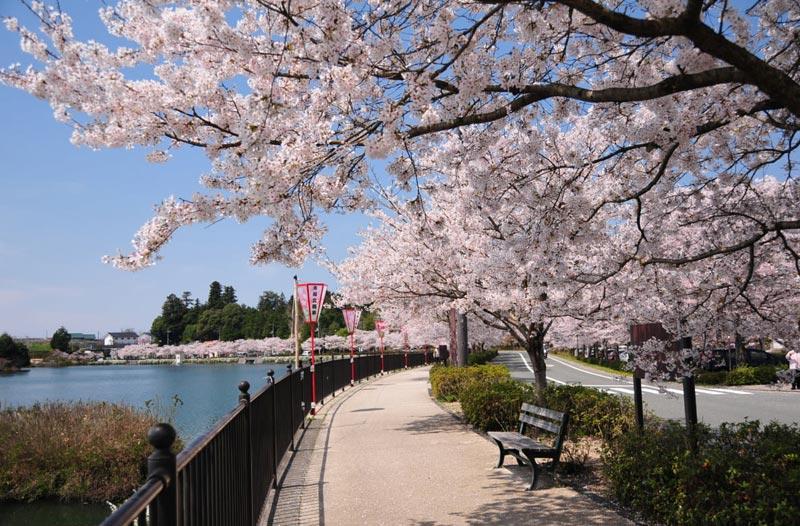 Парк Уэно в Токио
