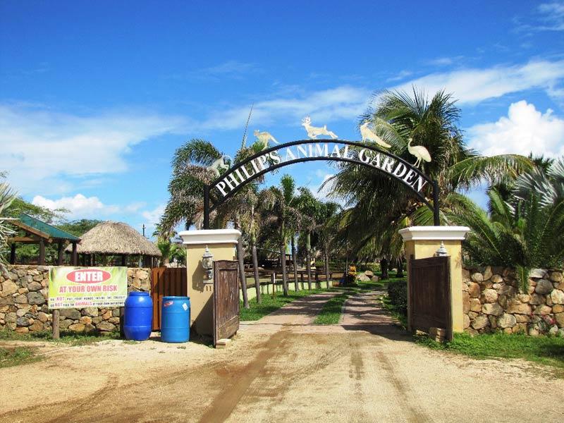 Сад животных Филиппа - Аруба