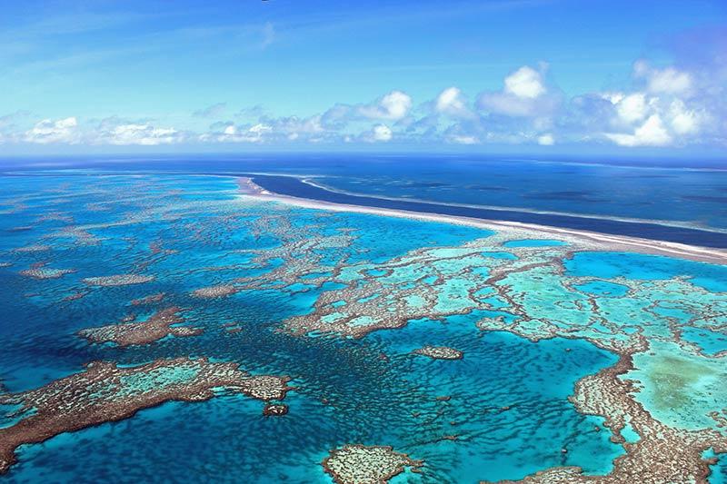 Месоамериканский Барьерный риф