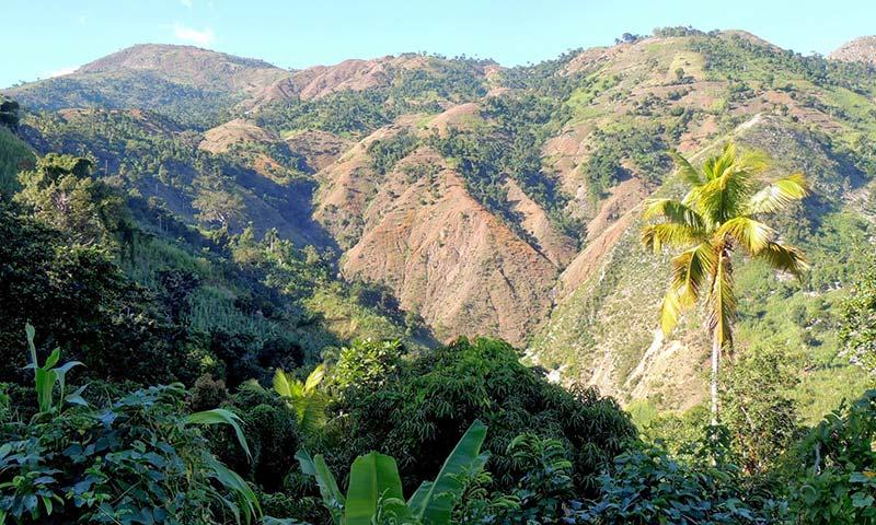 Национальный парк Макайя, Гаити